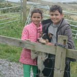 Family Moments with Dog at the Dingle Sheep Dog Demos