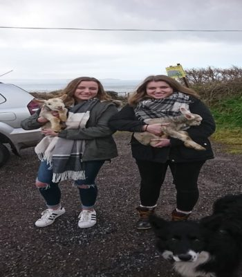 Two happy Clients with Lambs and Dog